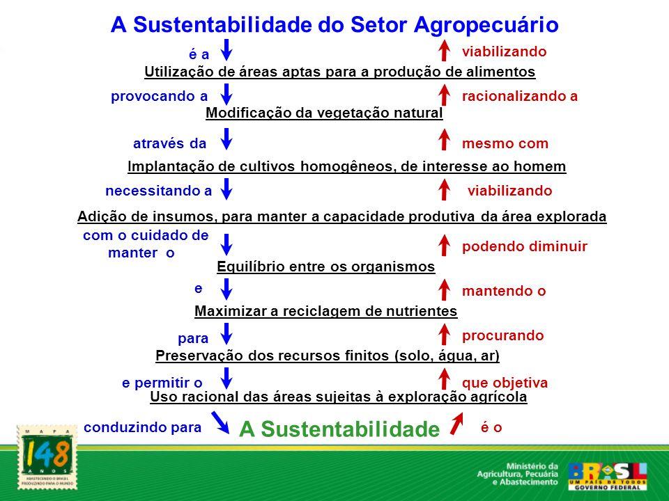 A Sustentabilidade do Setor Agropecuário Utilização de áreas aptas para a produção de alimentos é a viabilizando Modificação da vegetação natural prov
