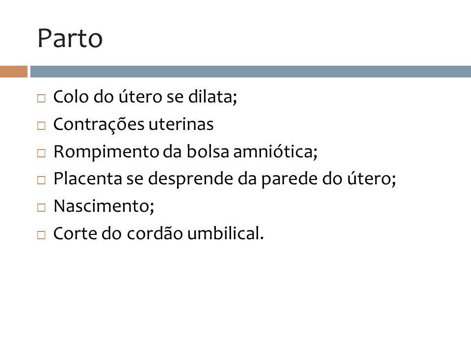 Parto Colo do útero se dilata; Contrações uterinas Rompimento da bolsa amniótica; Placenta se desprende da parede do útero; Nascimento; Corte do cordã