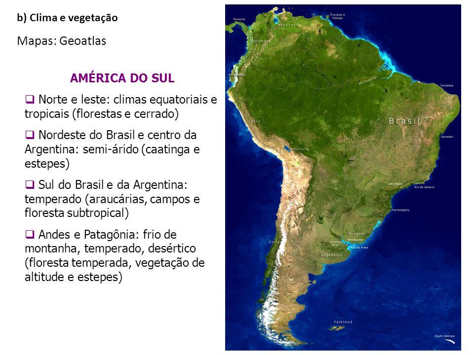 AMÉRICA DO SUL Norte e leste: climas equatoriais e tropicais (florestas e cerrado) Nordeste do Brasil e centro da Argentina: semi-árido (caatinga e es