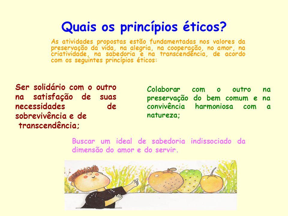 Quais os princípios éticos? As atividades propostas estão fundamentadas nos valores da preservação da vida, na alegria, na cooperação, no amor, na cri