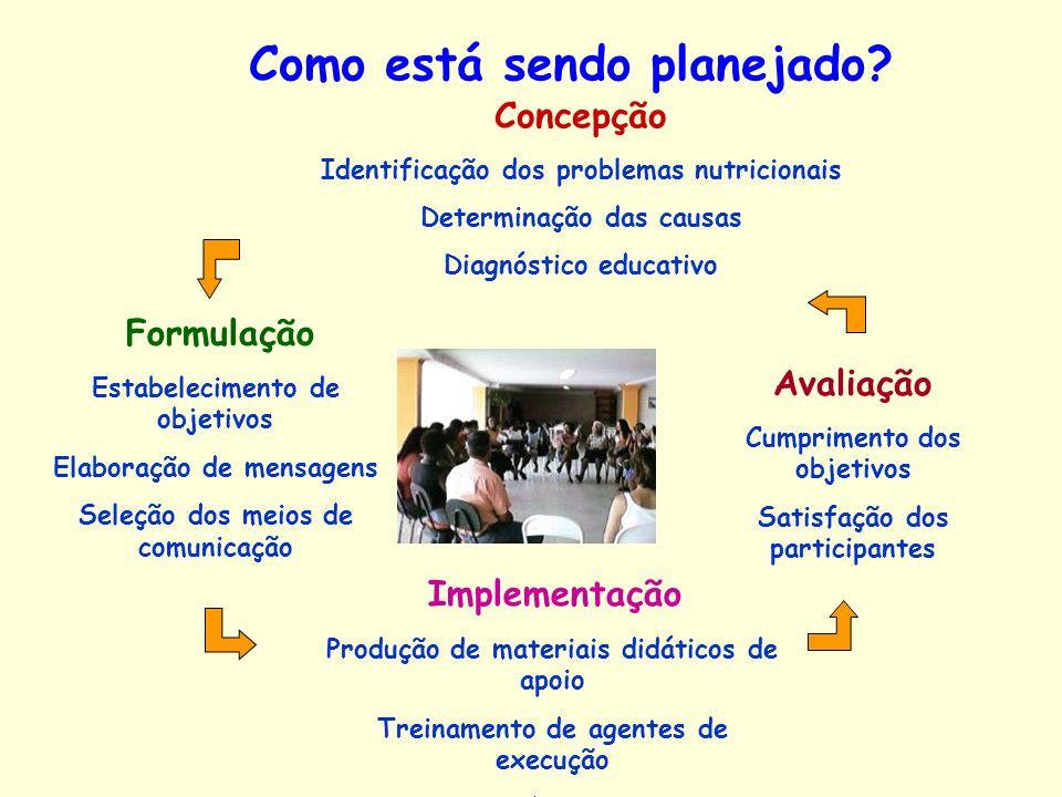 Concepção Identificação dos problemas nutricionais Determinação das causas Diagnóstico educativo Formulação Estabelecimento de objetivos Elaboração de