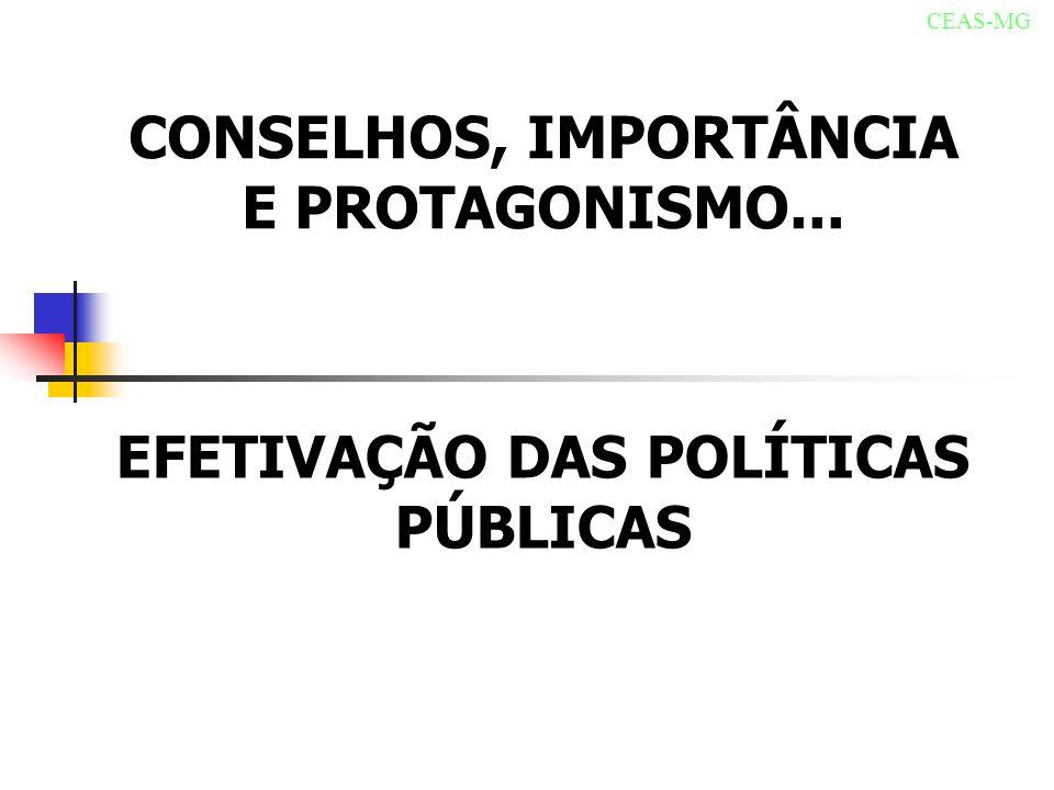 CONSELHOS, IMPORTÂNCIA E PROTAGONISMO... CEAS-MG EFETIVAÇÃO DAS POLÍTICAS PÚBLICAS