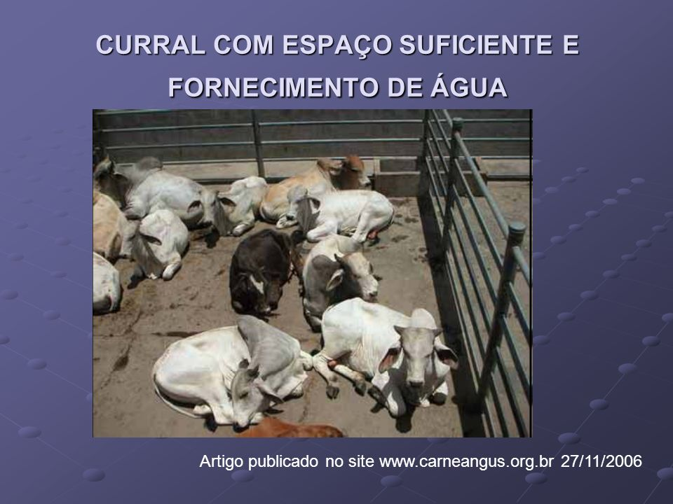 CURRAL COM ESPAÇO SUFICIENTE E FORNECIMENTO DE ÁGUA Artigo publicado no site www.carneangus.org.br 27/11/2006