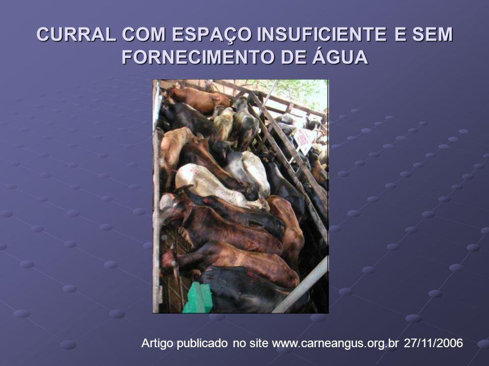 CURRAL COM ESPAÇO INSUFICIENTE E SEM FORNECIMENTO DE ÁGUA Artigo publicado no site www.carneangus.org.br 27/11/2006