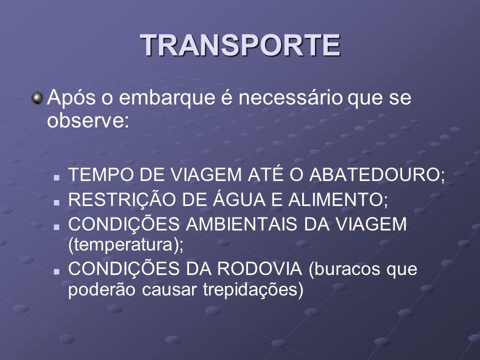 TRANSPORTE Após o embarque é necessário que se observe: TEMPO DE VIAGEM ATÉ O ABATEDOURO; RESTRIÇÃO DE ÁGUA E ALIMENTO; CONDIÇÕES AMBIENTAIS DA VIAGEM