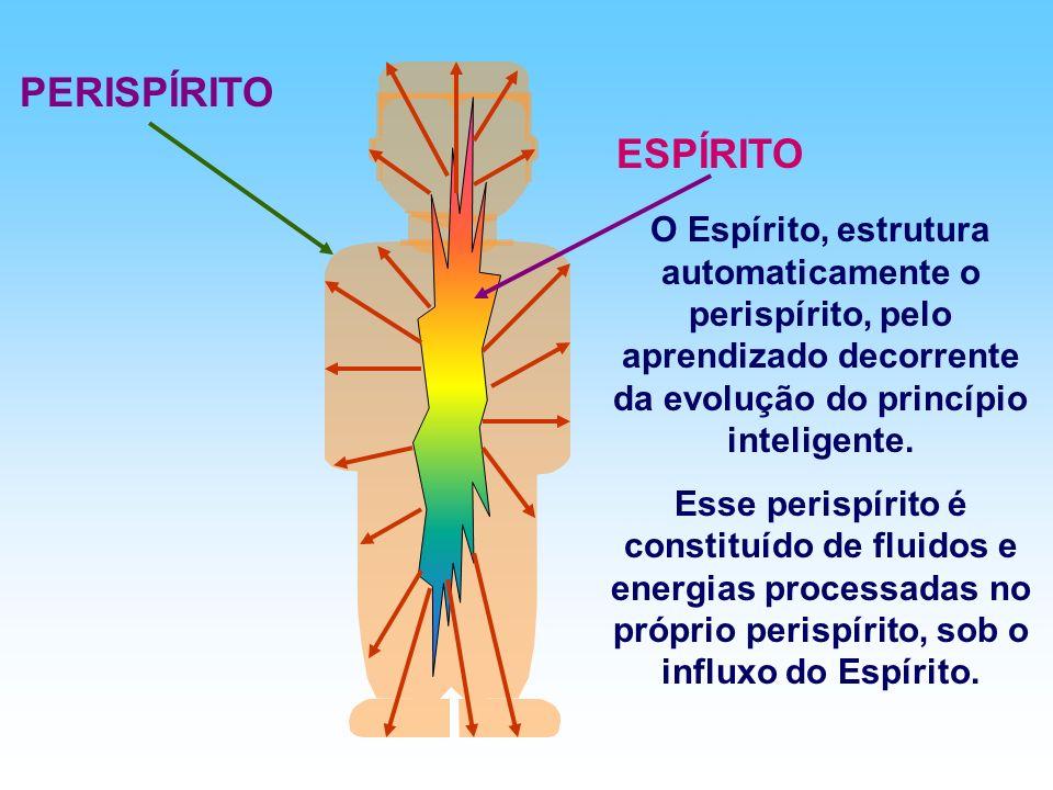 ESPÍRITO PERISPÍRITO O Espírito, estrutura automaticamente o perispírito, pelo aprendizado decorrente da evolução do princípio inteligente.