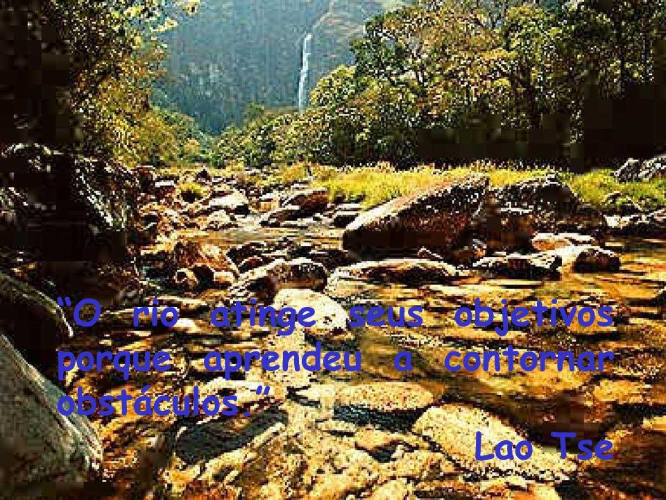 O rio atinge seus objetivos porque aprendeu a contornar obstáculos. Lao Tse