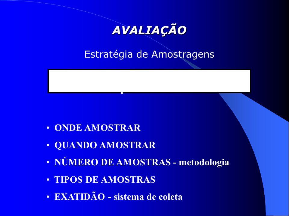 AVALIAÇÃO Estratégia de Amostragens Fundamentos da Amostragem Representatividade ONDE AMOSTRAR QUANDO AMOSTRAR NÚMERO DE AMOSTRAS - metodologia TIPOS DE AMOSTRAS EXATIDÃO - sistema de coleta
