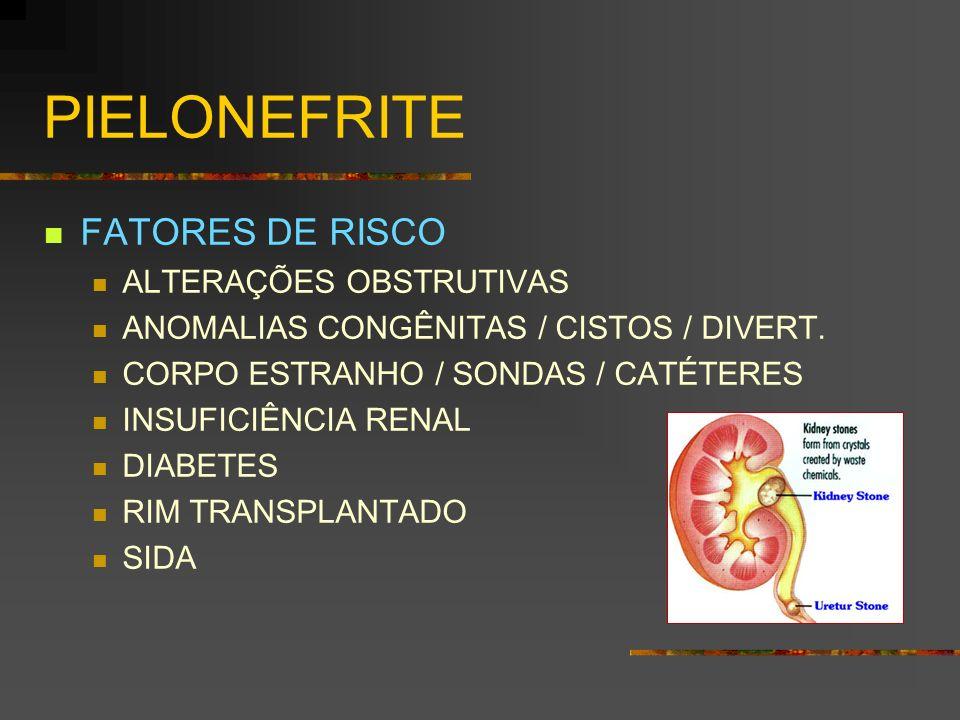 PIELONEFRITE FATORES DE RISCO ALTERAÇÕES OBSTRUTIVAS ANOMALIAS CONGÊNITAS / CISTOS / DIVERT. CORPO ESTRANHO / SONDAS / CATÉTERES INSUFICIÊNCIA RENAL D