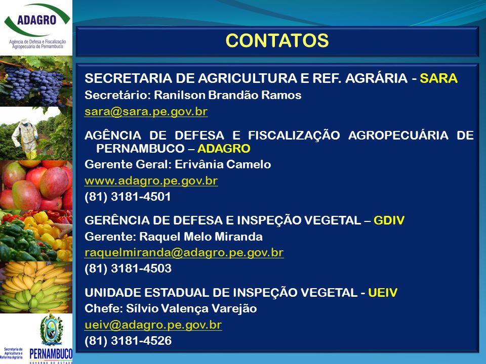 SECRETARIA DE AGRICULTURA E REF. AGRÁRIA - SARA Secretário: Ranilson Brandão Ramos sara@sara.pe.gov.br AGÊNCIA DE DEFESA E FISCALIZAÇÃO AGROPECUÁRIA D