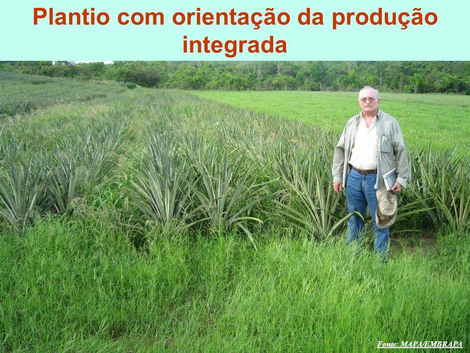 mzuppi.cursos@gmail.com Educação e Treinamento do Homem do Campo Fonte: MAPA/EMBRAPA O DESAFIO GLOBAL Plantio com orientação da produção integrada