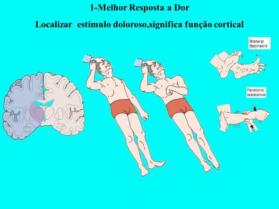 1-Melhor Resposta a Dor Localizar estímulo doloroso,significa função cortical