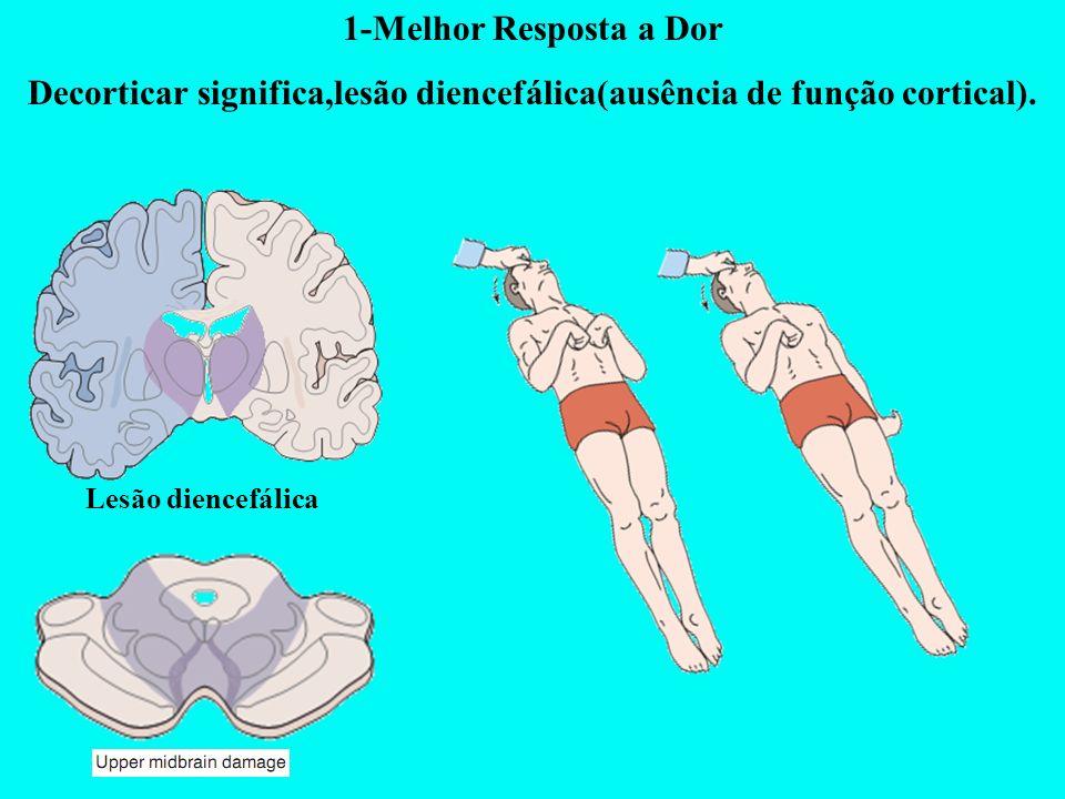 1-Melhor Resposta a Dor Decorticar significa,lesão diencefálica(ausência de função cortical). Lesão diencefálica