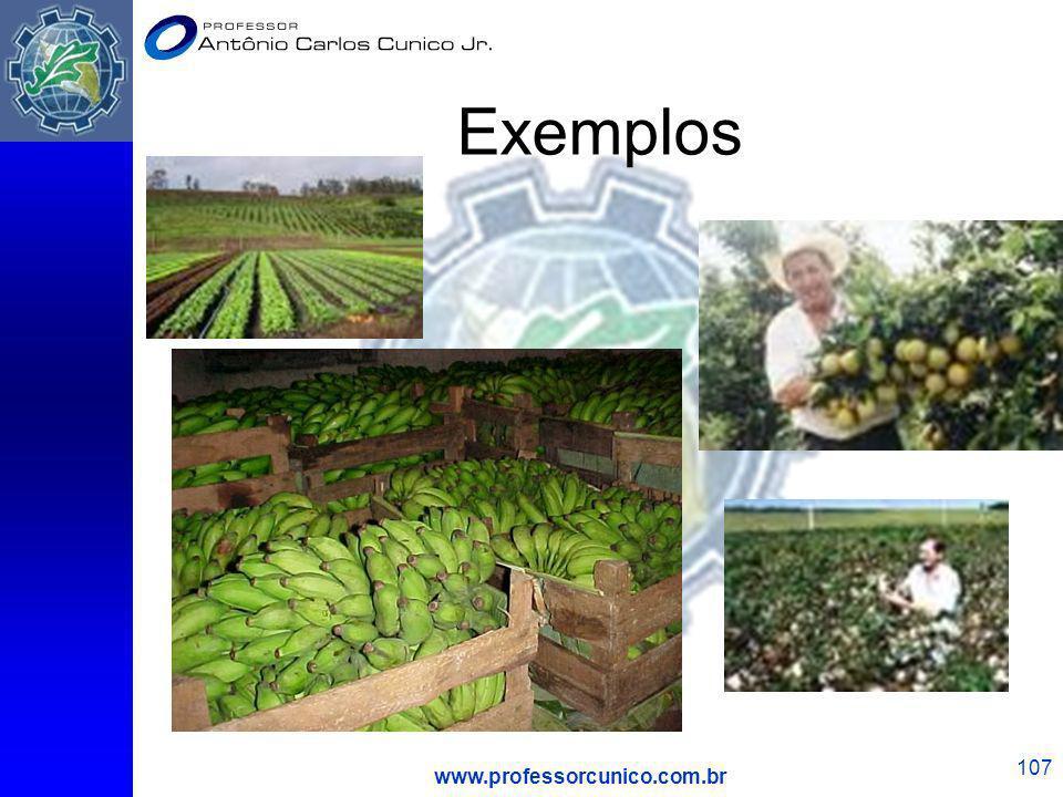 www.professorcunico.com.br 107 Exemplos
