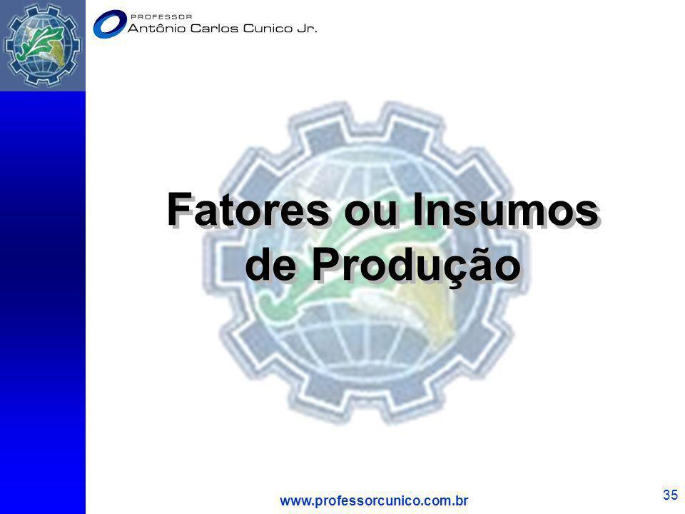 www.professorcunico.com.br 35 Fatores ou Insumos de Produção