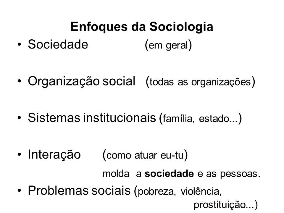 Enfoques da Sociologia Sociedade ( em geral ) Organização social ( todas as organizações ) Sistemas institucionais ( família, estado... ) Interação( c