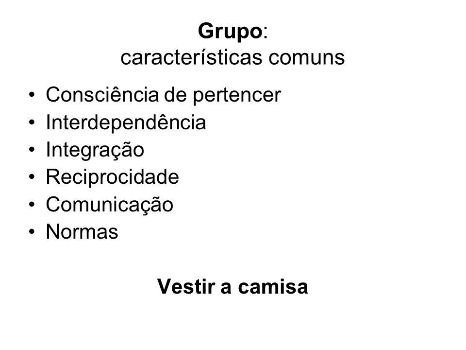 Grupo: características comuns Consciência de pertencer Interdependência Integração Reciprocidade Comunicação Normas Vestir a camisa
