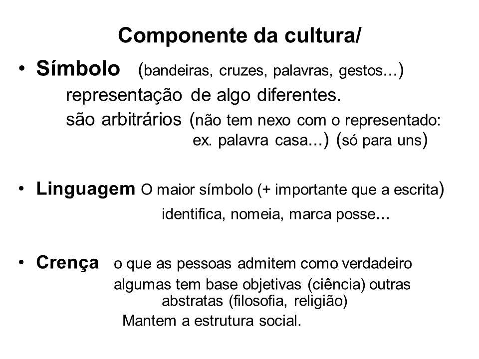 Componente da cultura/ Símbolo ( bandeiras, cruzes, palavras, gestos...) representação de algo diferentes. são arbitrários ( não tem nexo com o repres