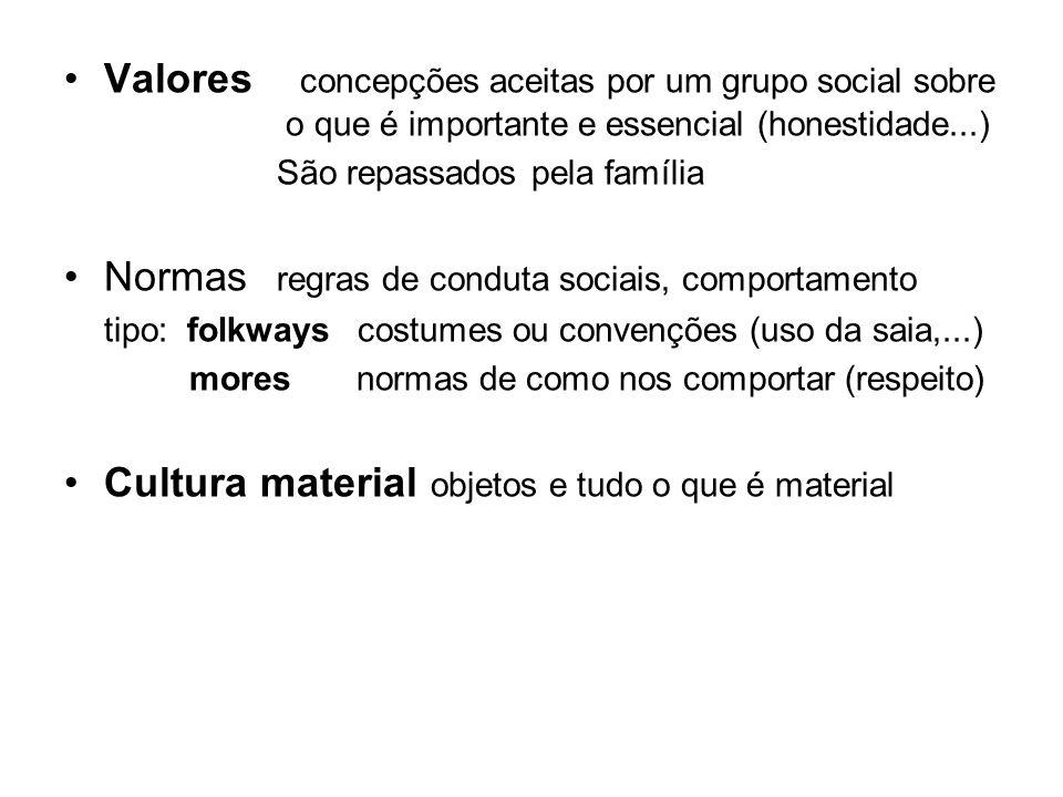 Valores concepções aceitas por um grupo social sobre o que é importante e essencial (honestidade...) São repassados pela família Normas regras de cond
