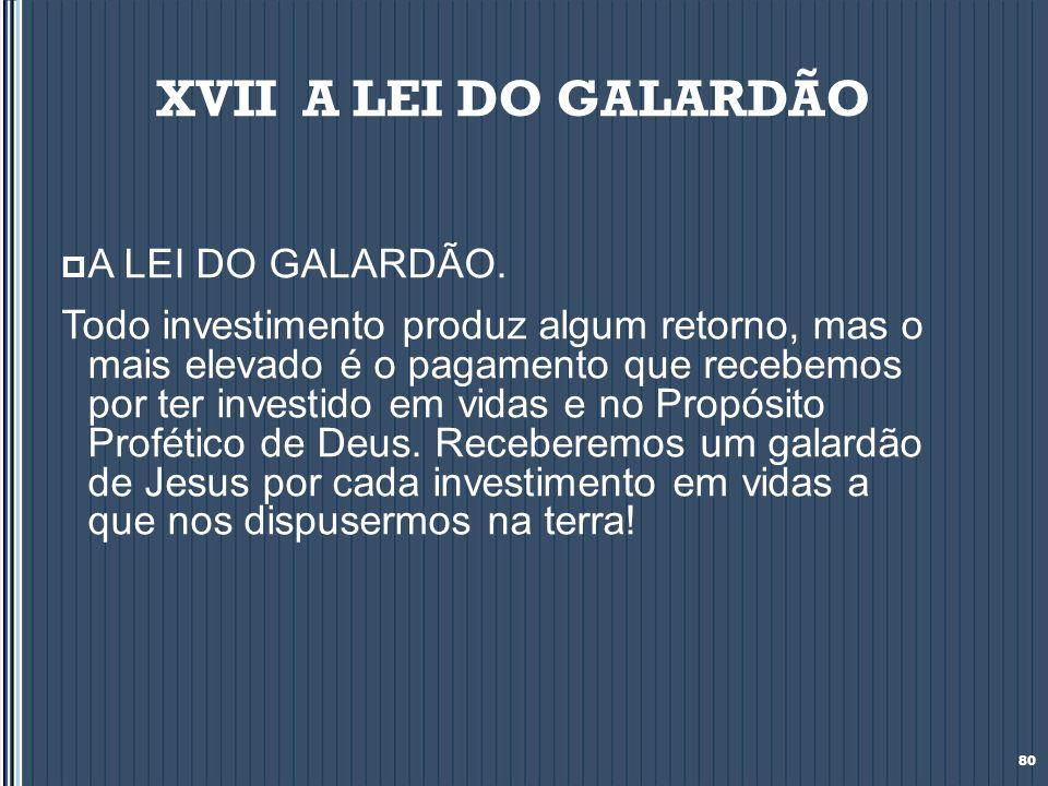 XVII A LEI DO GALARDÃO A LEI DO GALARDÃO. Todo investimento produz algum retorno, mas o mais elevado é o pagamento que recebemos por ter investido em
