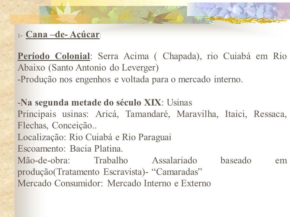 1- Cana –de- Açúcar : Período Colonial: Serra Acima ( Chapada), rio Cuiabá em Rio Abaixo (Santo Antonio do Leverger) -Produção nos engenhos e voltada