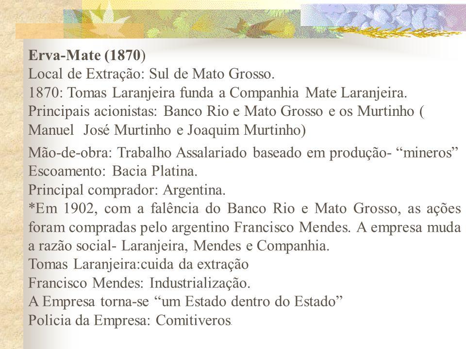 Erva-Mate (1870) Local de Extração: Sul de Mato Grosso. 1870: Tomas Laranjeira funda a Companhia Mate Laranjeira. Principais acionistas: Banco Rio e M