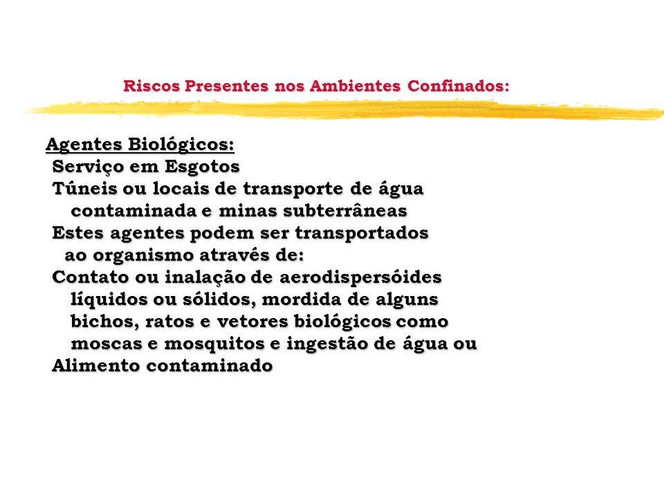 Riscos Presentes nos Ambientes Confinados: Agentes Biológicos: Serviço em Esgotos Serviço em Esgotos Túneis ou locais de transporte de água Túneis ou