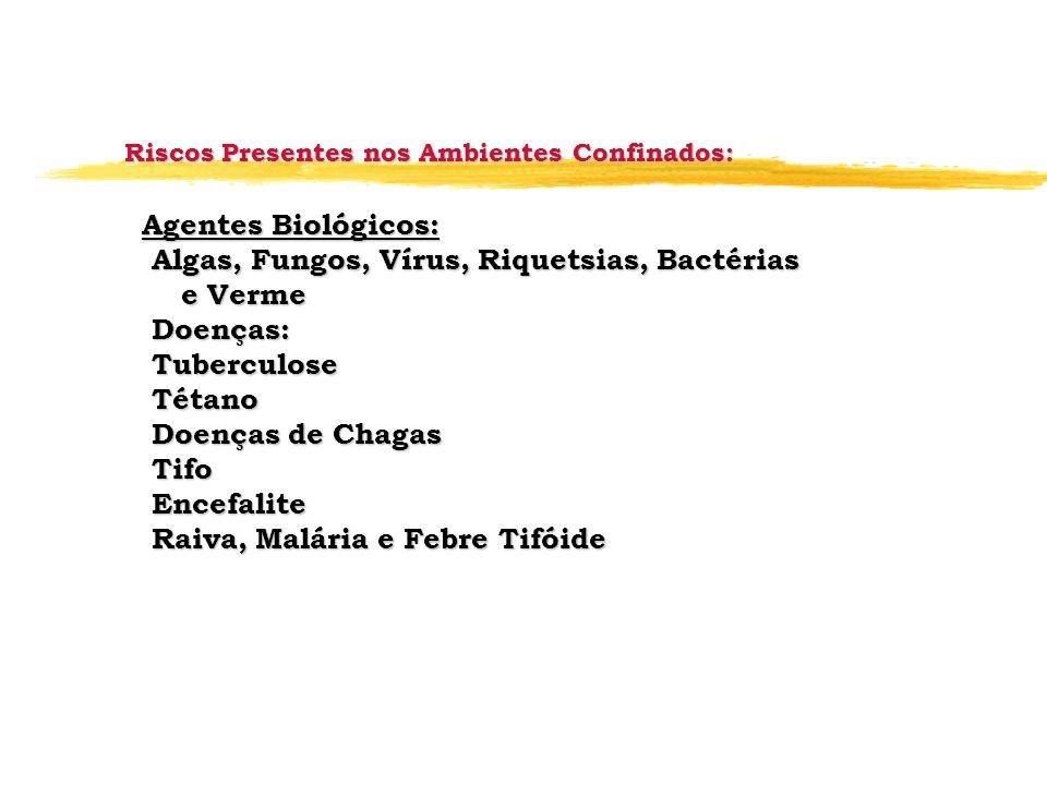 Agentes Biológicos: Algas, Fungos, Vírus, Riquetsias, Bactérias Algas, Fungos, Vírus, Riquetsias, Bactérias e Verme e Verme Doenças: Doenças: Tubercul