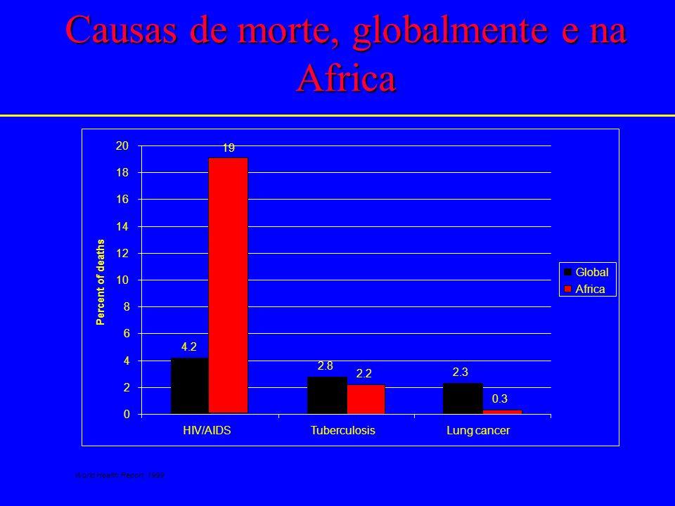 Impacto da AIDS no índice de desenvolvimento humano (HDI) na Africa do SUL Source: HIV/AIDS & Human Development South Africa, UNAIDS & UNDP UNAIDS–Add