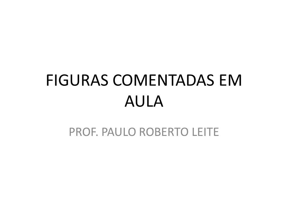 FIGURAS COMENTADAS EM AULA PROF. PAULO ROBERTO LEITE