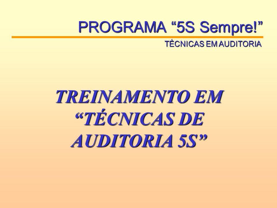 PROGRAMA 5S Sempre! TÉCNICAS EM AUDITORIA TREINAMENTO EM TÉCNICAS DE AUDITORIA 5S