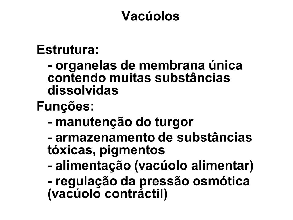 Vacúolos Estrutura: - organelas de membrana única contendo muitas substâncias dissolvidas Funções: - manutenção do turgor - armazenamento de substânci