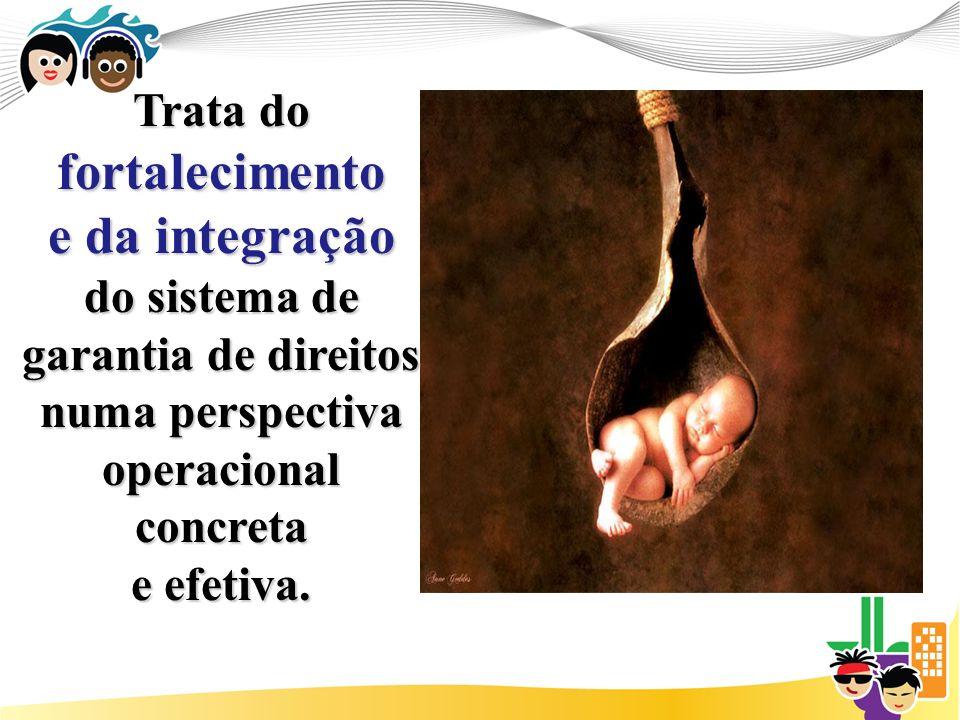 Trata do fortalecimento e da integração do sistema de garantia de direitos numa perspectiva operacional concreta e efetiva.