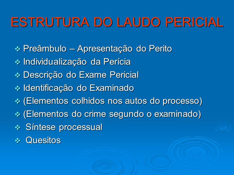 ESTRUTURA DO LAUDO PERICIAL Preâmbulo – Apresentação do Perito Preâmbulo – Apresentação do Perito Individualização da Perícia Individualização da Perí