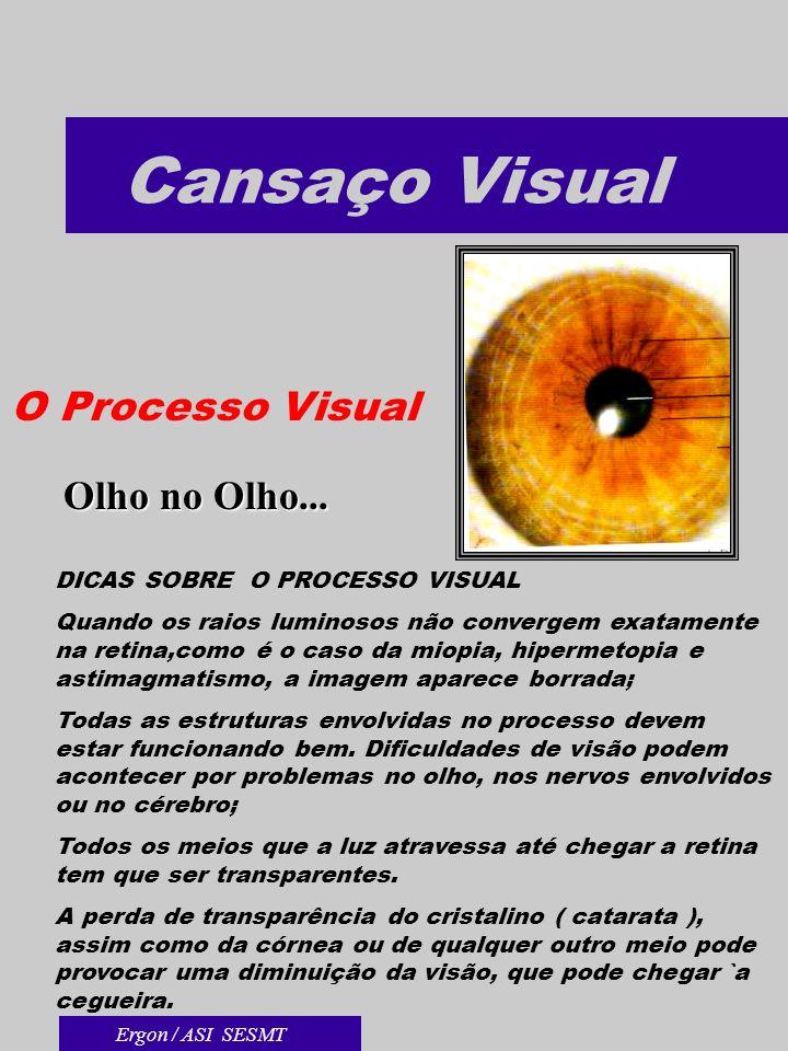 Cansaço Visual O Processo Visual Olho no Olho... DICAS SOBRE O PROCESSO VISUAL Quando os raios luminosos não convergem exatamente na retina,como é o c
