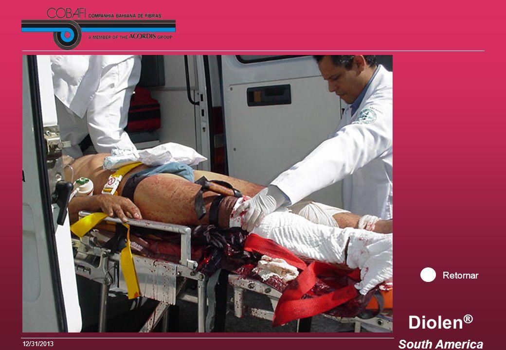 Diolen ® South America 12/31/2013 Retornar