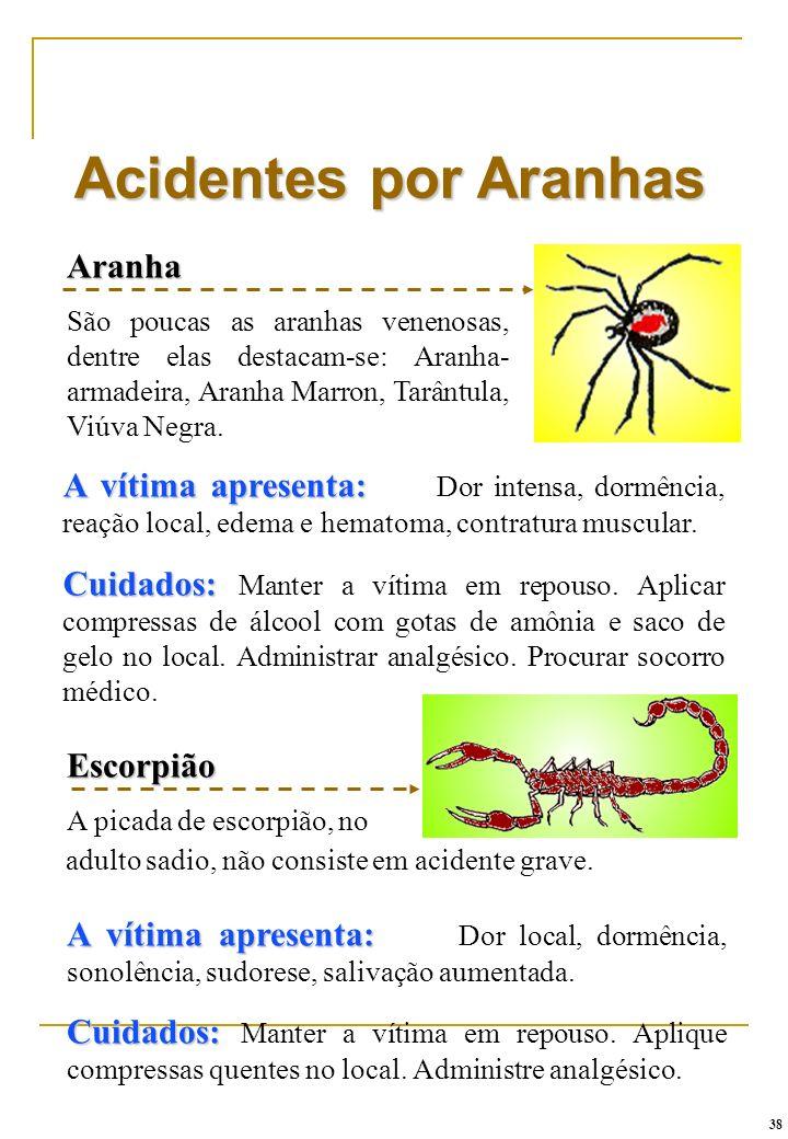 Aranha São poucas as aranhas venenosas, dentre elas destacam-se: Aranha- armadeira, Aranha Marron, Tarântula, Viúva Negra. Acidentes por Aranhas A vít