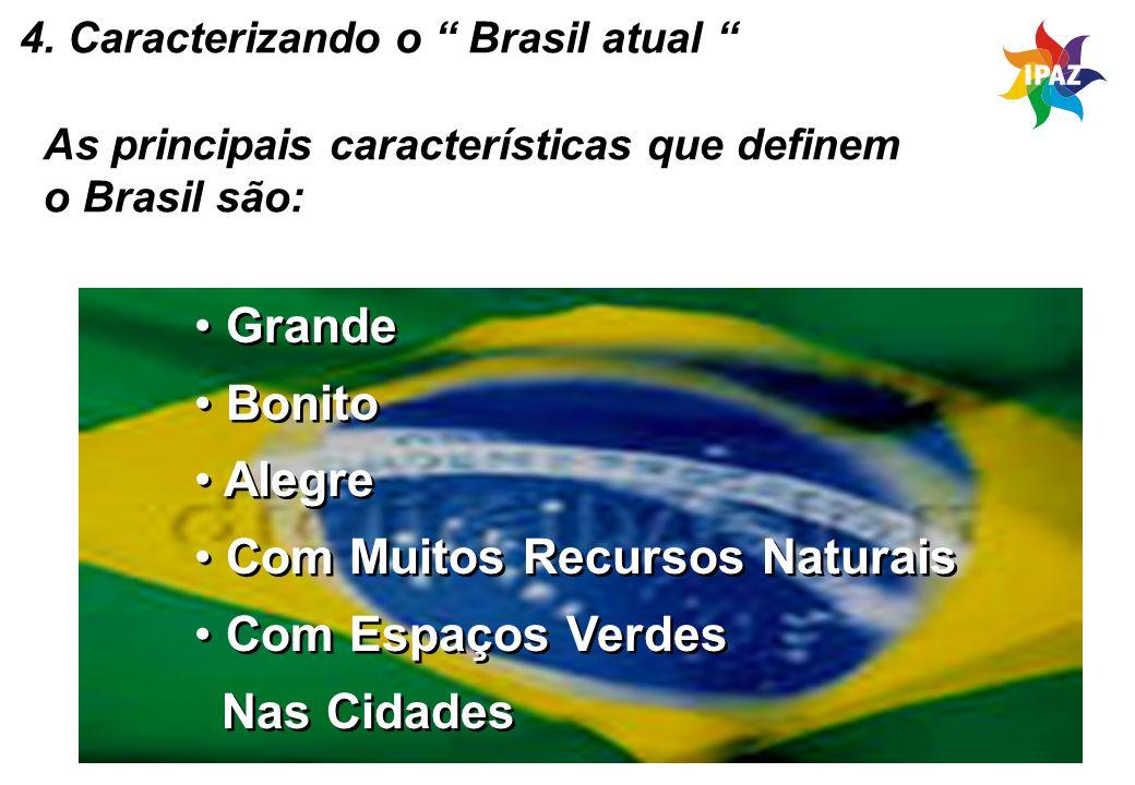 42 4. Caracterizando o Brasil atual As principais características que definem o Brasil são: Grande Bonito Alegre Com Muitos Recursos Naturais Com Espa
