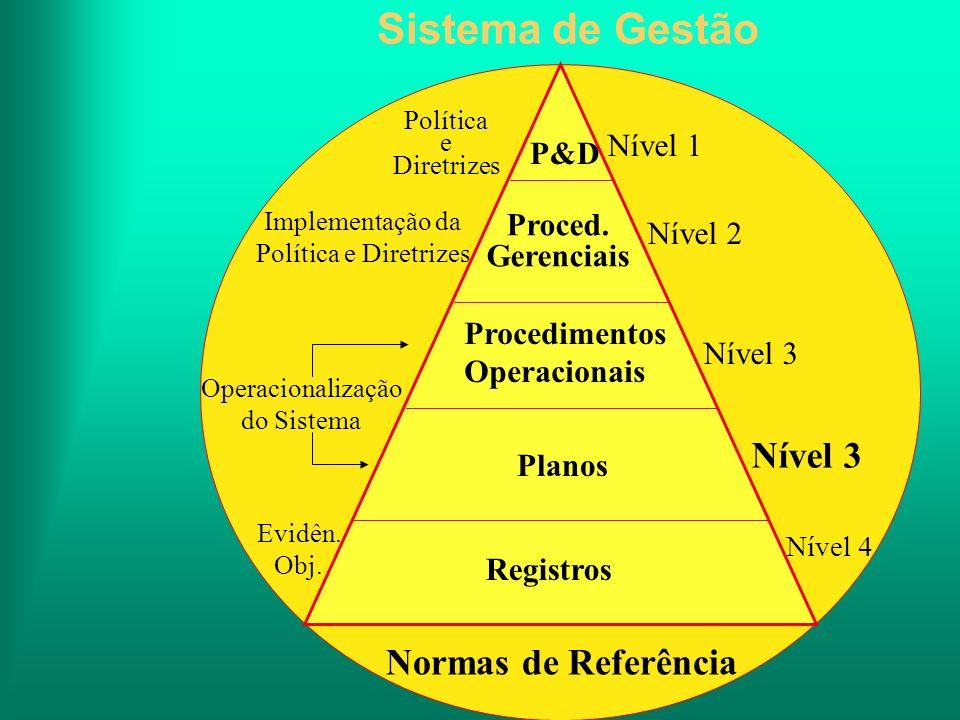Sistema de Gestão Nível 1 P&D Política e Diretrizes Nível 2 Proced. Gerenciais Implementação da Política e Diretrizes Nível 3 Procedimentos Operaciona