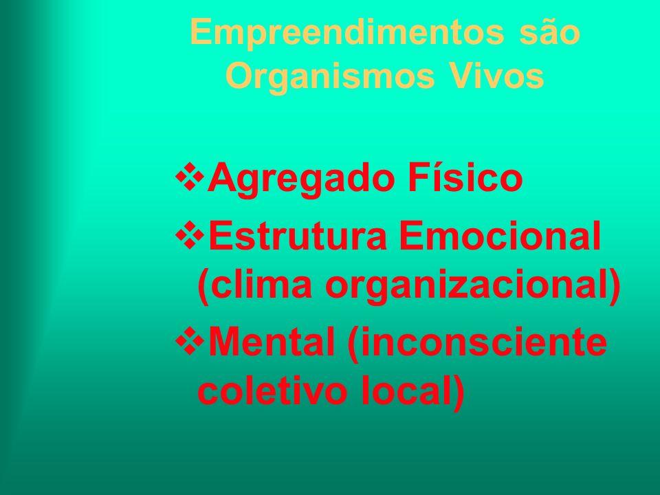 Empreendimentos são Organismos Vivos Agregado Físico Estrutura Emocional (clima organizacional) Mental (inconsciente coletivo local)