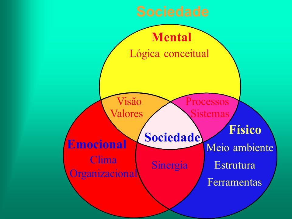 Sociedade Lógica conceitual Mental Emocional Clima Organizacional Físico Visão Valores Sociedade Processos Sistemas Estrutura Ferramentas Meio ambient