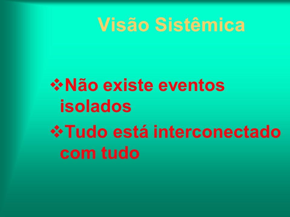 Visão Sistêmica Não existe eventos isolados Tudo está interconectado com tudo