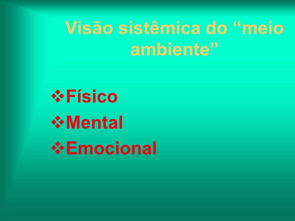Visão sistêmica do meio ambiente Físico Mental Emocional