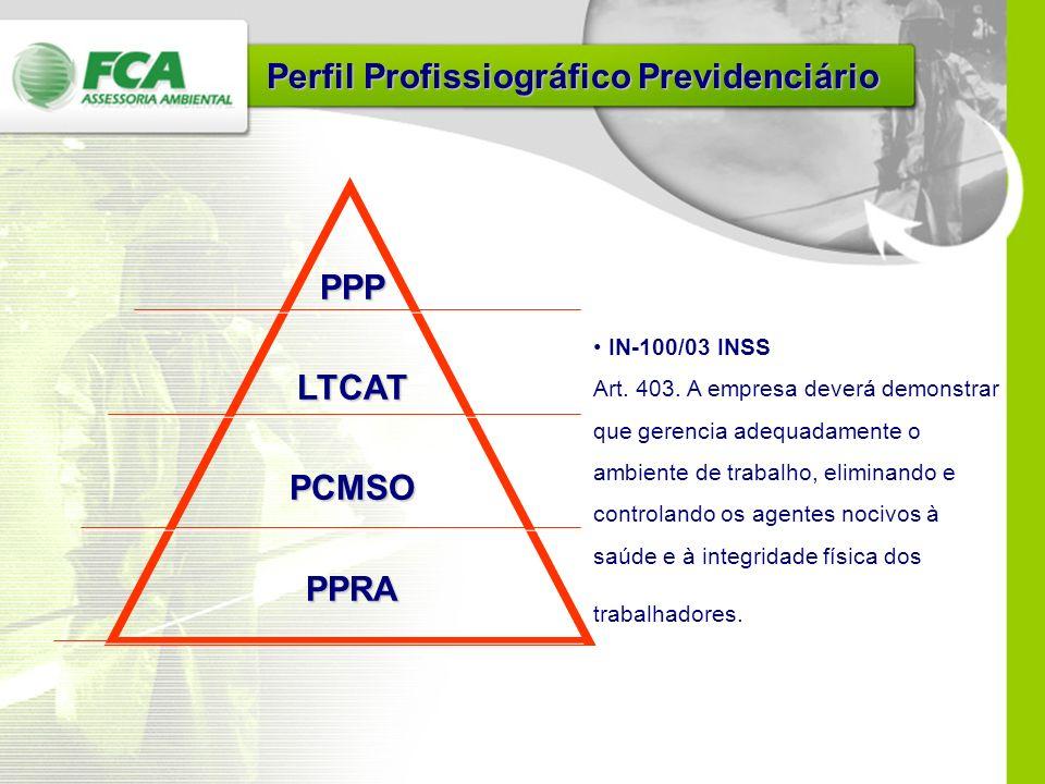 PPP - Perfil Profissiográfico Previdenciário PPP - Perfil Profissiográfico Previdenciário CIPA CIPA Evento Sindimadeira 2004
