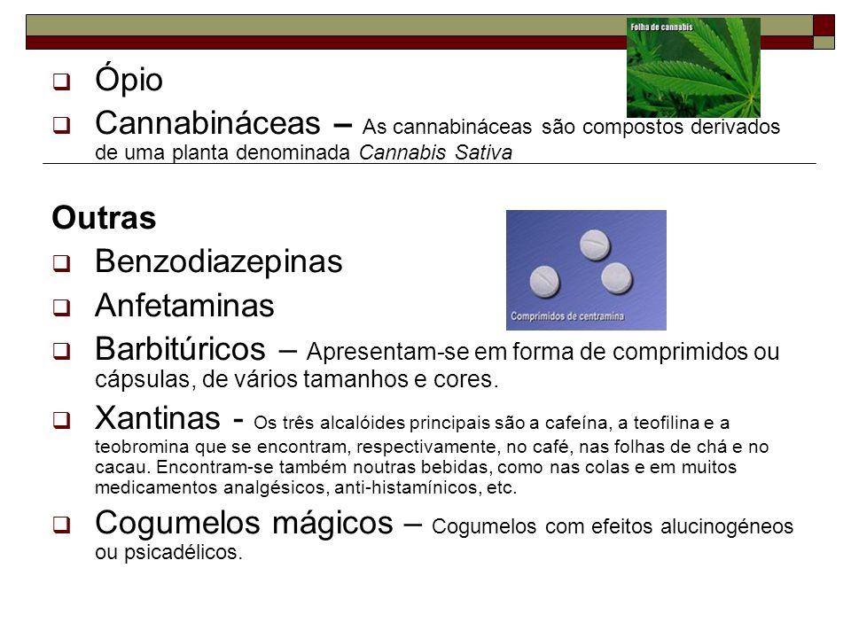 Ópio Cannabináceas – As cannabináceas são compostos derivados de uma planta denominada Cannabis Sativa Outras Benzodiazepinas Anfetaminas Barbitúricos