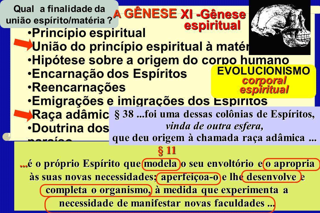 CONSEQUÊNCIAS e APLICAÇÕES do E EE Espiritismo Princípio espiritual União do princípio espiritual à matéria Hipótese sobre a origem do corpo humano En