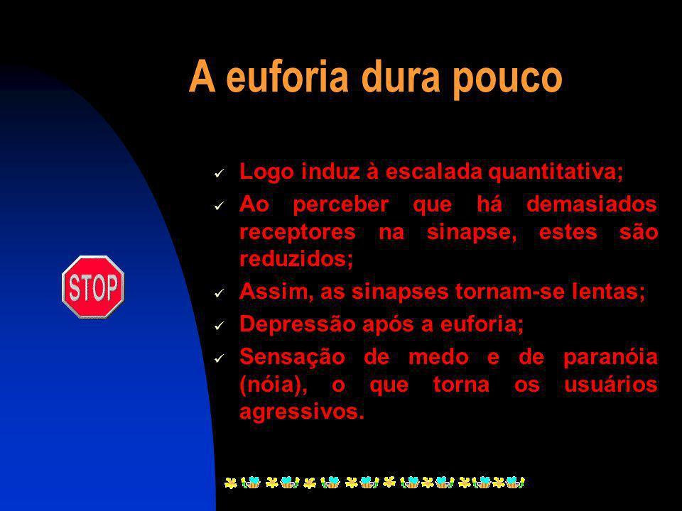 Conseqüências do uso de Crack Euforia; Desinibição; Agitação psicomotora; Taquicardia; Dilatação da pupila; Aumento da transpiração; Alucinações visua
