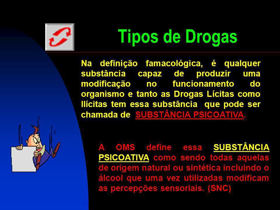 Tipos de Drogas L ícitas: Álcool, Cigarros de Tabaco, Medicamentos, Inalantes (Como por exemplo a Cola de Sapateiro). Ilícitas: Maconha, Cocaína, Crac