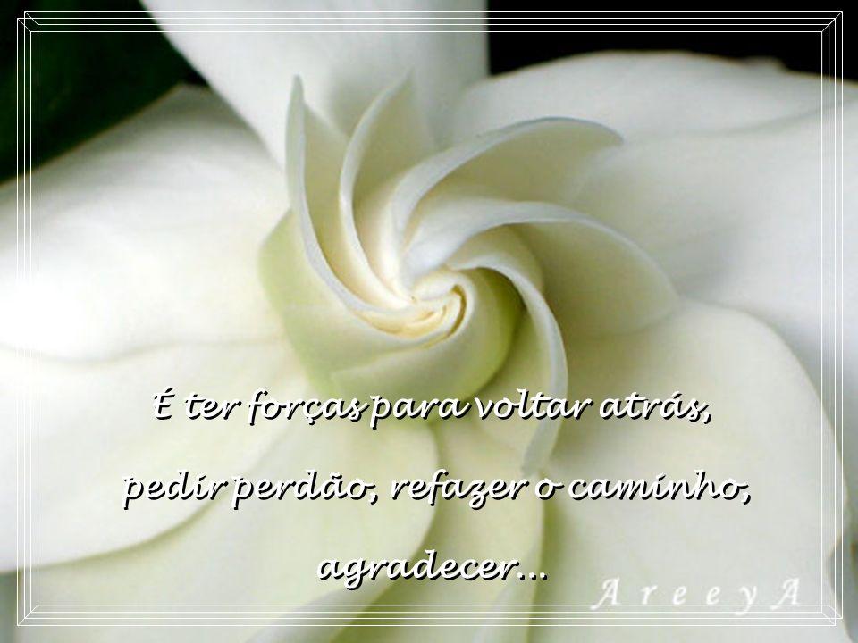 Ter paz é ter coragem de chorar ou de sorrir quando se tem vontade... Ter paz é ter coragem de chorar ou de sorrir quando se tem vontade...