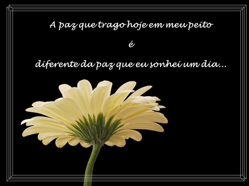 Texto: Marcelo Celente Imagens: Encontradas na Internet Música: Autumn Rose - Ernesto Cortazar Criação: Ana Maria Jr.